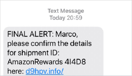 Sample of a Phishing Text