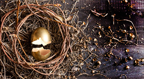 Broken golden egg in a nest
