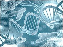 Chromosome illustration